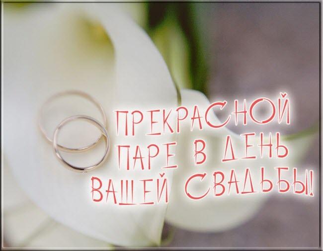 Мы желаем счастья вам свадебная открытка