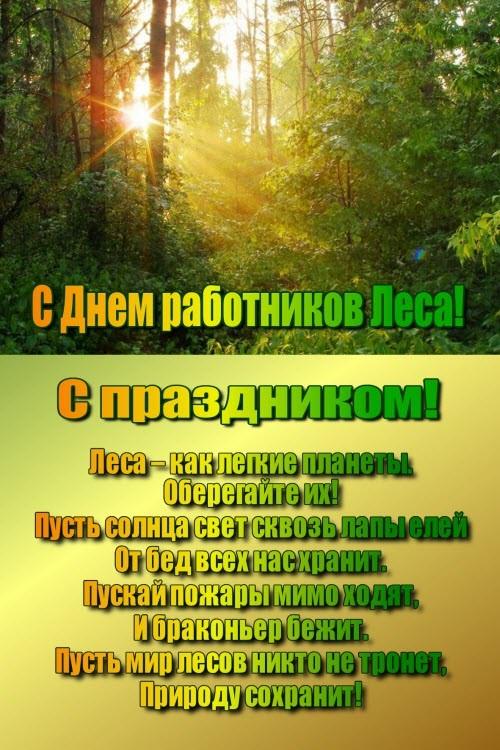 Поздравления для работников лесного хозяйства