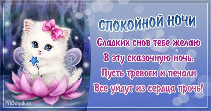 сладких снов тебе