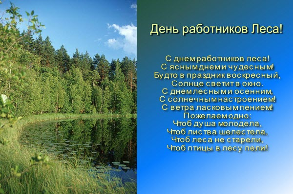 Категория день работников леса