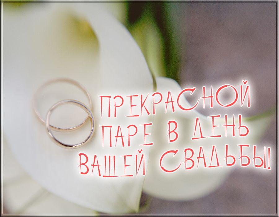 Cоставить поздравление - Поздравления и стихи на заказ