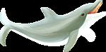 разделитель дельфин